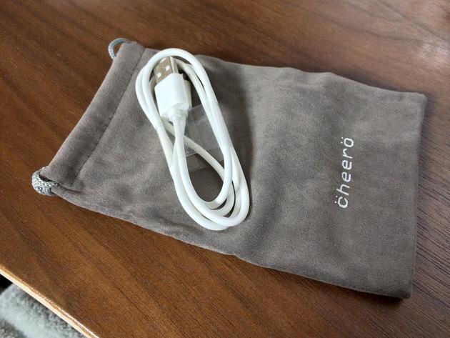 巾着袋とmicro USBが付属。