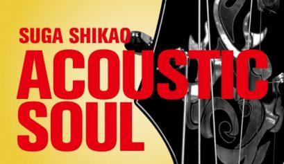 acoustic_soul