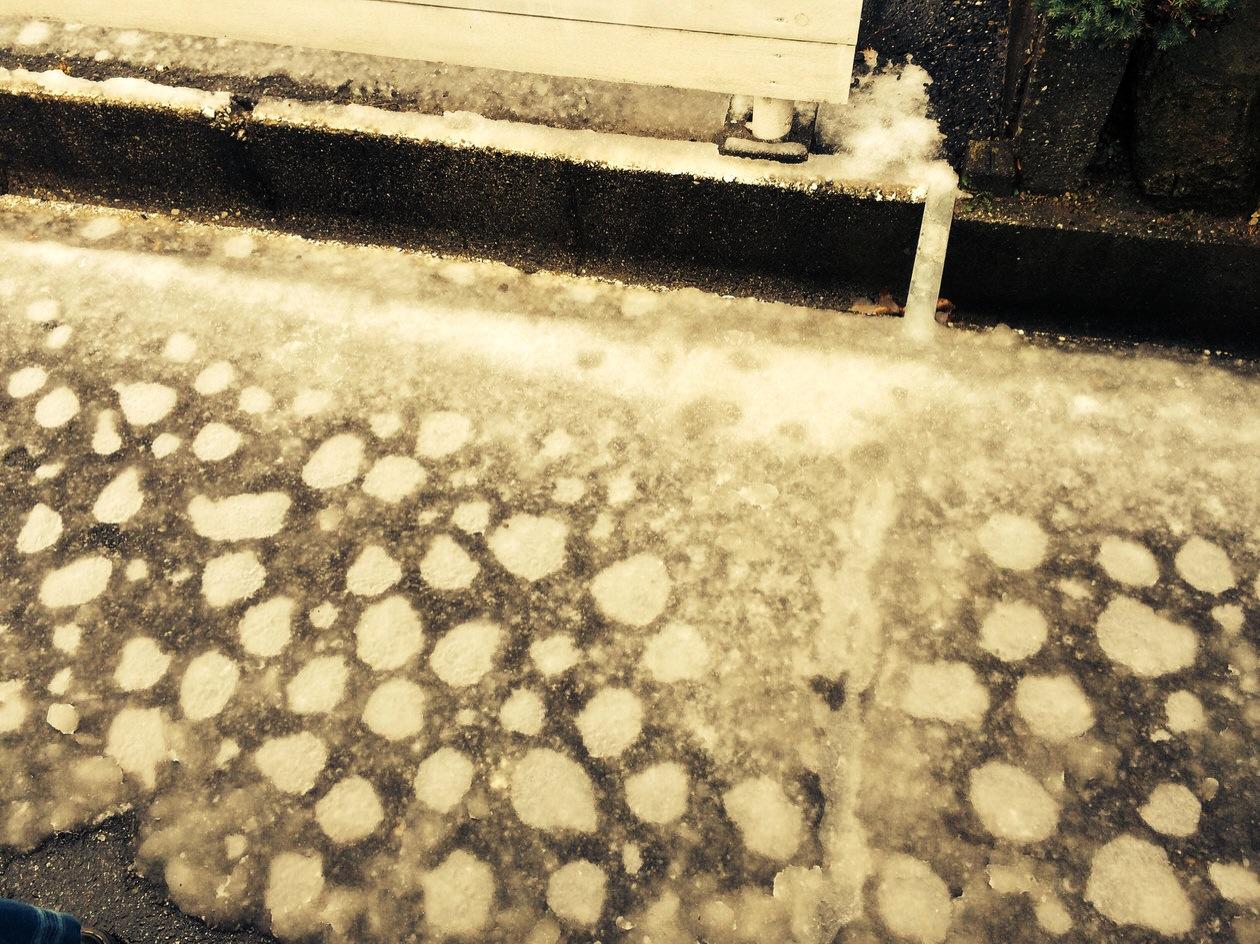 豹紋積雪?大阪のオバチャン積雪?